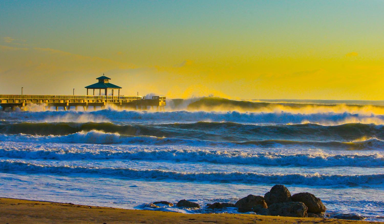 Dania Pier Surf Report Forecast Surfline