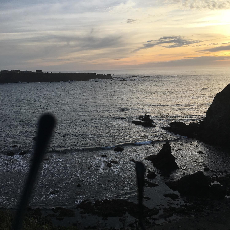 westport surf report forecast surfline
